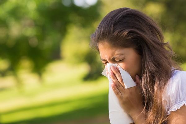 ルイボスティー効能,アレルギー