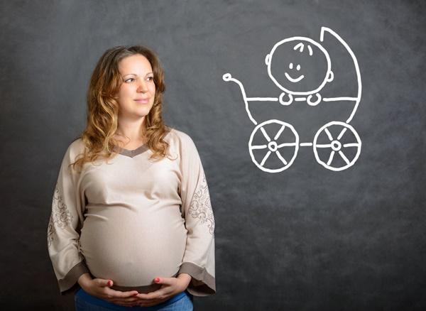 ルイボスティー効能,妊娠期間